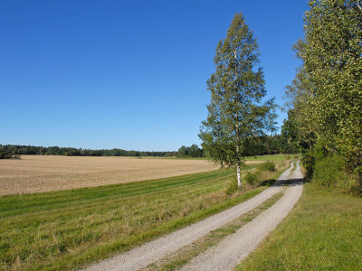 Näs gård - viltparadis och 549 ha av Mälaren medföljer