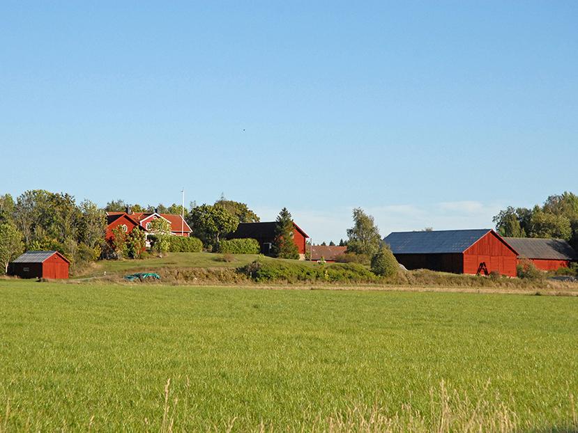 Näs gård - viltparadis och 549 ha av Mälaren medföljer.