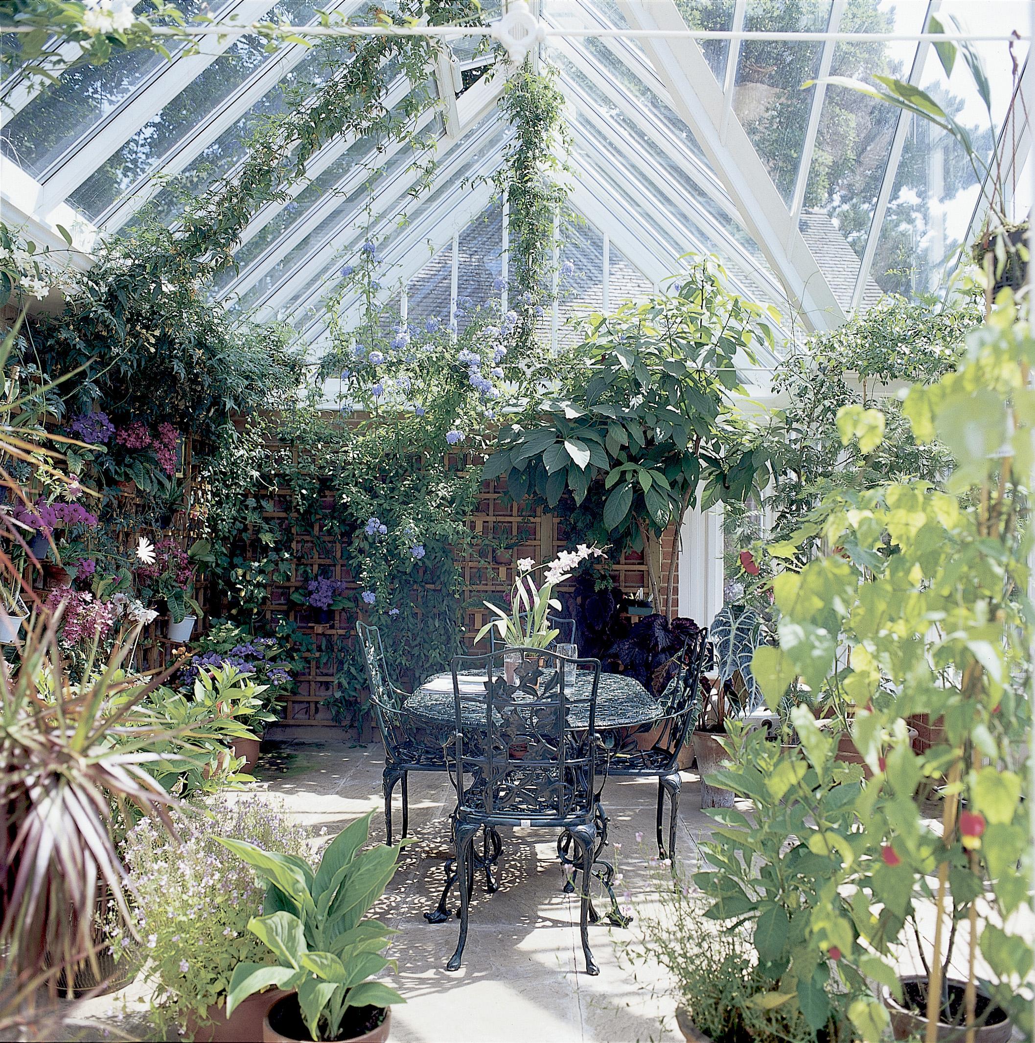 Råd och tips som lyfter din trädgård.