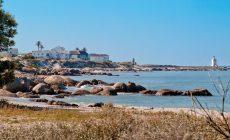 Villa Silver Bay av SAOTA - vacker arkitektur vid havet