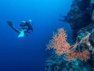 The Wakaya Club & Spa i Fiji. Exklusiva resor med lyxhotell eller lyxiga resorts